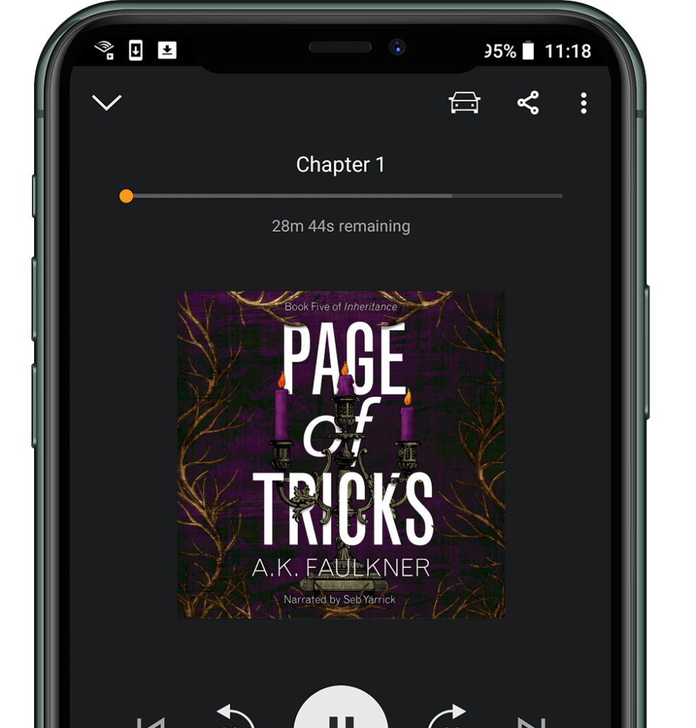 Page of Tricks audiobook